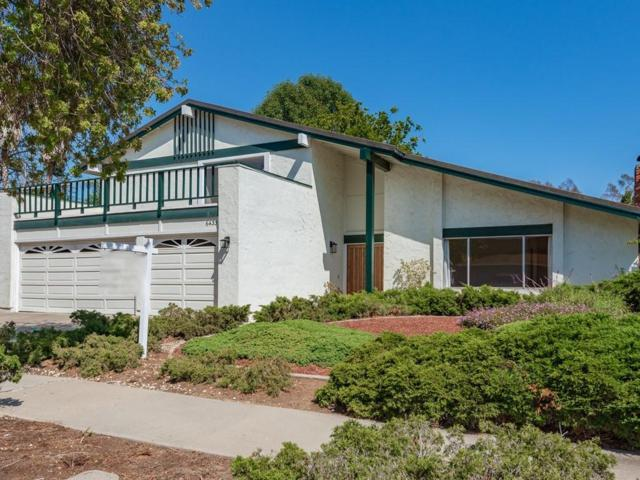 6433 Camino Viviente, Goleta, CA 93117 (MLS #19-2519) :: The Epstein Partners