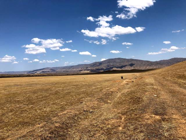 2170 Aliso Park Rd, NEW CUYAMA, CA 93254 (MLS #19-3156) :: Chris Gregoire & Chad Beuoy Real Estate