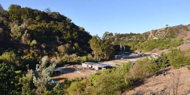 841-861 E. Alamar Ave, Santa Barbara, CA 93105 (MLS #19-3380) :: The Epstein Partners