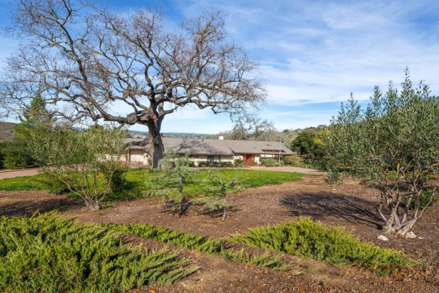 3153 Riley Rd, Solvang, CA 93463 (MLS #19-341) :: The Epstein Partners