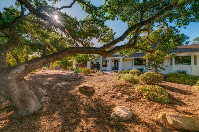 300 Running Ridge Trl, Ojai, CA 93023 (MLS #19-3501) :: The Zia Group