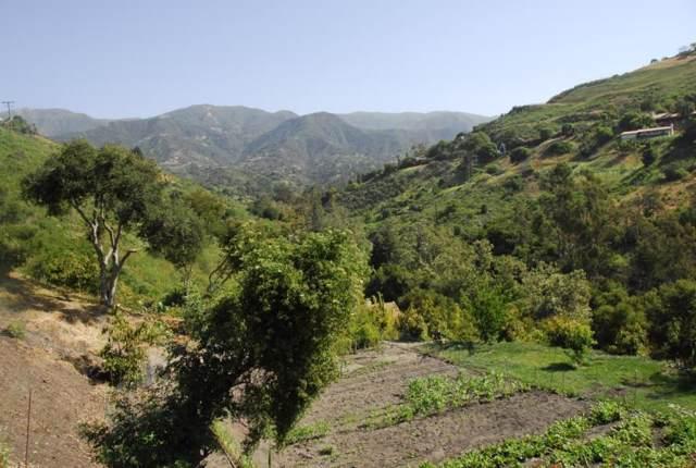 1487 Sycamore Canyon Rd, Santa Barbara, CA 93108 (MLS #19-3551) :: The Epstein Partners