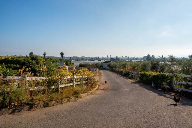 4614 Foothill Rd, Carpinteria, CA 93013 (MLS #19-3836) :: The Zia Group
