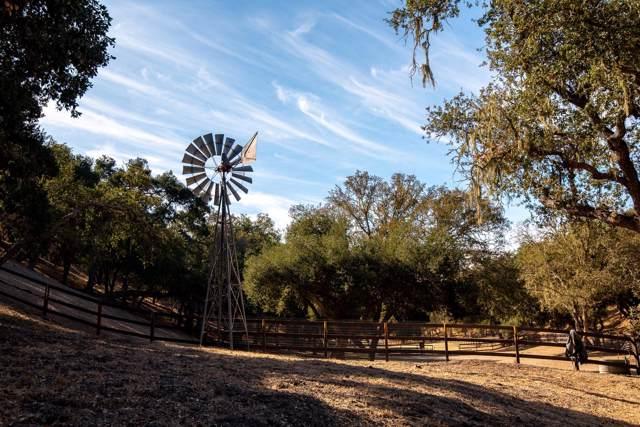 4140 Oak View Rd, Santa Ynez, CA 93460 (MLS #19-3884) :: The Zia Group