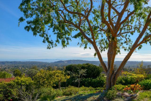 1240 Santa Teresita Dr, Santa Barbara, CA 93105 (MLS #19-392) :: The Zia Group