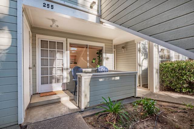7634 Hollister Ave #255, Goleta, CA 93117 (MLS #19-3921) :: The Epstein Partners