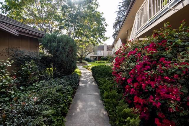 357 Moreton Bay Ln #3, Goleta, CA 93117 (MLS #19-3932) :: The Epstein Partners