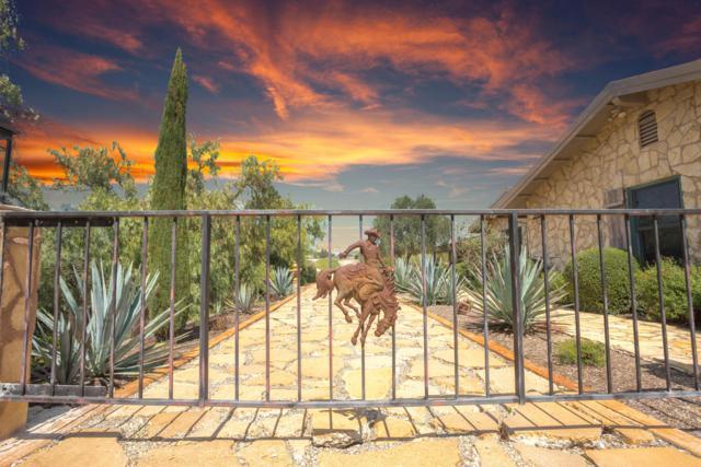3285 Buck Canyon Rd, Santa Ynez, CA 93460 (MLS #19-455) :: The Zia Group