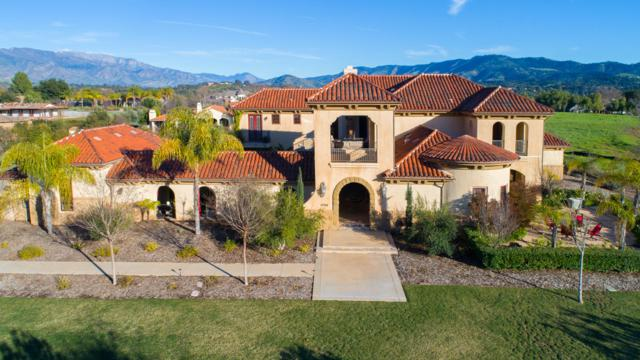 12768 Blue Heron Circle, Ojai, CA 93023 (MLS #19-524) :: The Zia Group