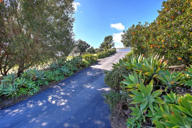 1371 Holiday Hill Rd, Goleta, CA 93117 (MLS #19-532) :: The Zia Group