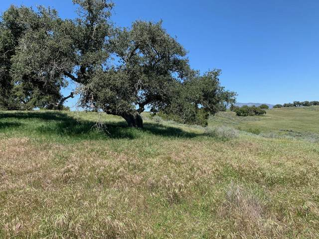 6767 Long Canyon Rd, Santa Maria, CA 93454 (MLS #20-1372) :: The Epstein Partners