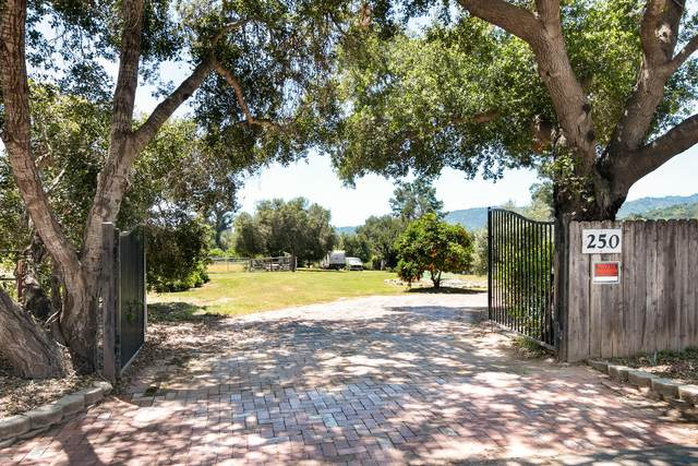 250 Verde Oak Dr, Oak View, CA 93022 (MLS #20-1673) :: The Epstein Partners