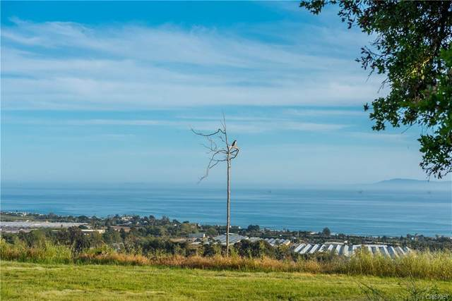 3600 Foothill Rd, Carpinteria, CA 93013 (MLS #20-1930) :: The Epstein Partners