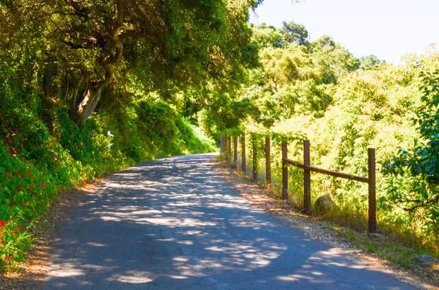 7020 Gobernador Canyon Rd, Santa Barbara, CA 93013 (MLS #20-1995) :: The Epstein Partners