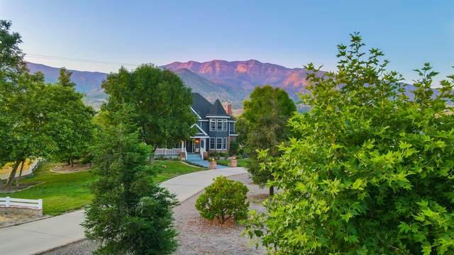 13100 Ojai Rd, Ojai, CA 93060 (MLS #20-2546) :: Chris Gregoire & Chad Beuoy Real Estate
