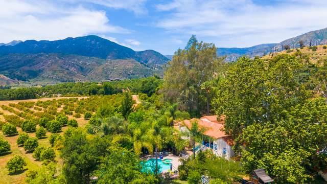 2705 Maricopa Hwy, Ojai, CA 93023 (MLS #20-2623) :: Chris Gregoire & Chad Beuoy Real Estate