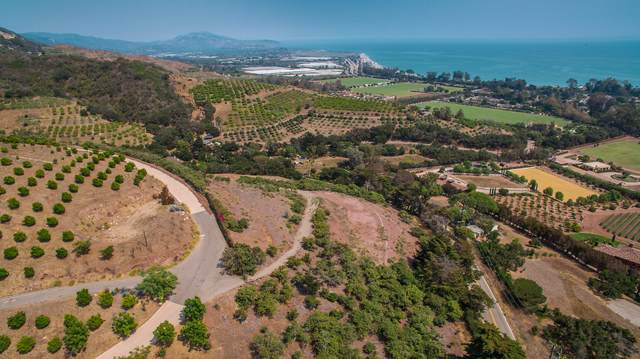 3040 Foothill Rd, Carpinteria, CA 93013 (MLS #20-2758) :: The Zia Group