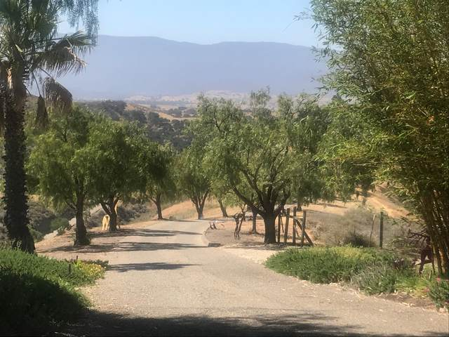 3251 Short Rd, Santa Ynez, CA 93460 (MLS #20-2855) :: Chris Gregoire & Chad Beuoy Real Estate
