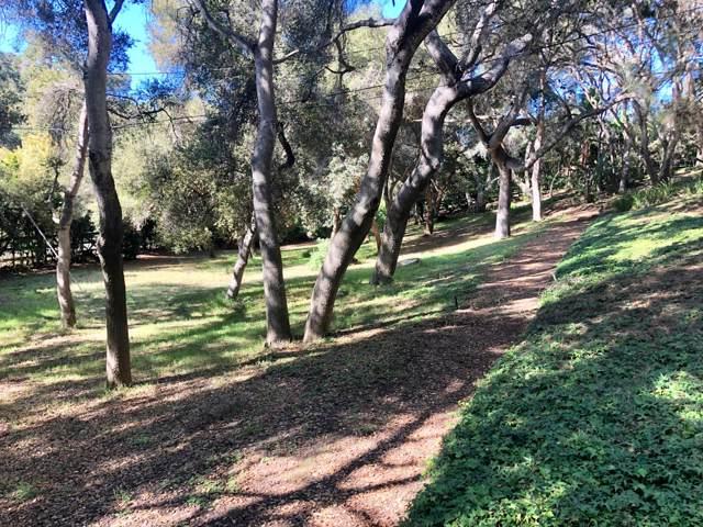 0 Via Tranquila, Santa Barbara, CA 93110 (MLS #20-296) :: The Epstein Partners
