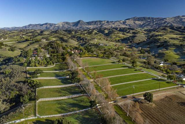4101 Roblar Ave, Santa Ynez, CA 93460 (MLS #20-306) :: The Zia Group