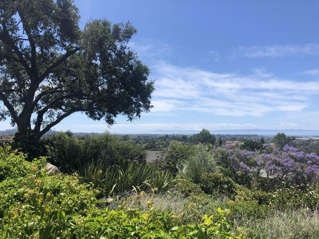 1465 Holiday Hill Rd, Goleta, CA 93117 (MLS #20-3544) :: The Zia Group
