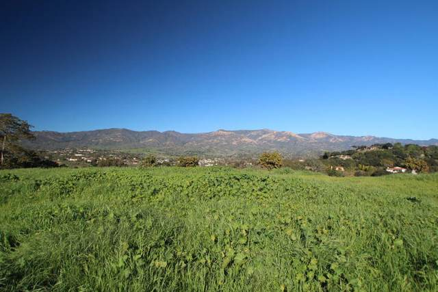 652 Via Trepadora, Santa Barbara, CA 93110 (MLS #20-4060) :: The Zia Group