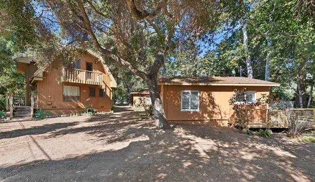 3196 Serena Ave, Carpinteria, CA 93013 (MLS #20-4147) :: The Epstein Partners