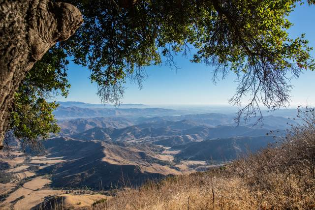 13500 E Sulphur Mountain Rd, Ojai, CA 93023 (MLS #20-4478) :: Chris Gregoire & Chad Beuoy Real Estate