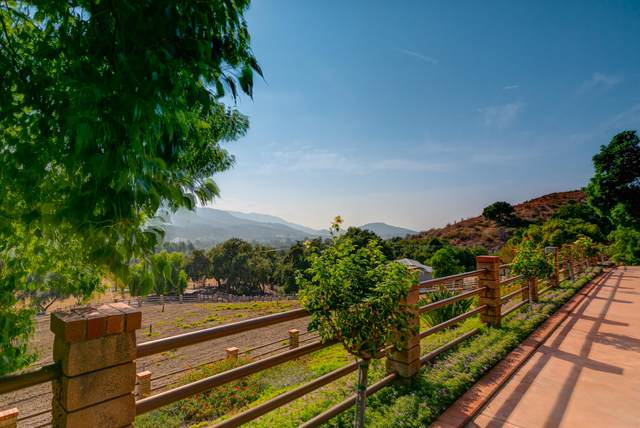 12605 Highwinds Rd, Ojai, CA 93023 (MLS #20-4486) :: The Epstein Partners