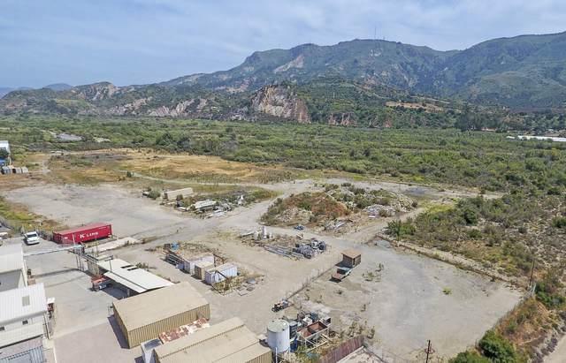 Lemonwood Dr Land, Santa Paula, CA 93060 (#20-4644) :: SG Associates