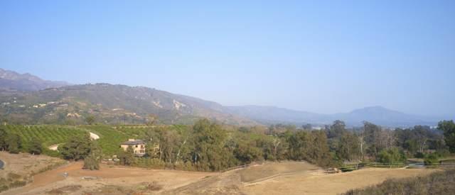 210 Montecito Ranch Pl, Summerland, CA 93067 (MLS #20-4698) :: The Epstein Partners