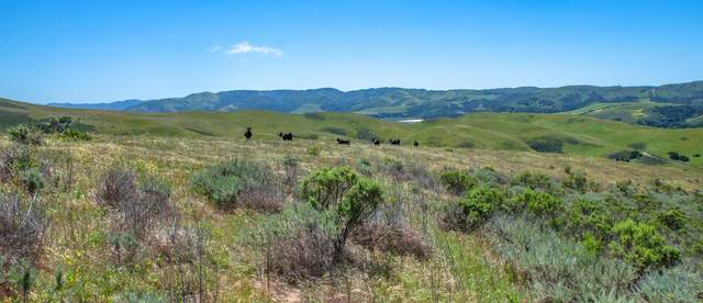 3500 Sweeney Rd, Lompoc, CA 93436 (MLS #21-1096) :: Chris Gregoire & Chad Beuoy Real Estate