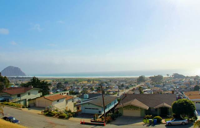 2920 Juniper Ave, MORRO BAY, CA 93442 (MLS #21-133) :: Chris Gregoire & Chad Beuoy Real Estate