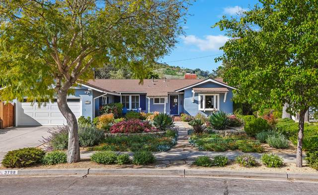 3798 Pescadero Dr, Santa Barbara, CA 93105 (MLS #21-1412) :: The Zia Group