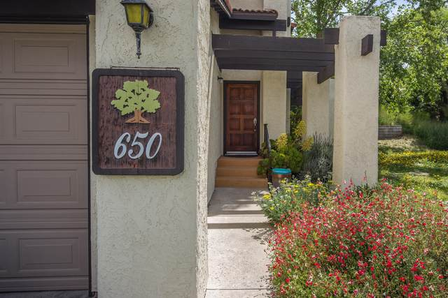 650 Floral Dr, Solvang, CA 93463 (MLS #21-1576) :: The Zia Group