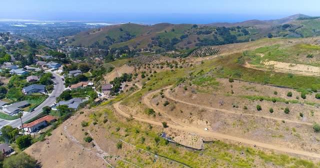 1251 Via Cielito, Ventura, CA 93003 (MLS #21-1682) :: The Zia Group
