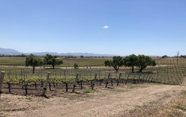 4415 Estelle Vineyard Dr, Santa Ynez, CA 93460 (MLS #21-1695) :: The Zia Group