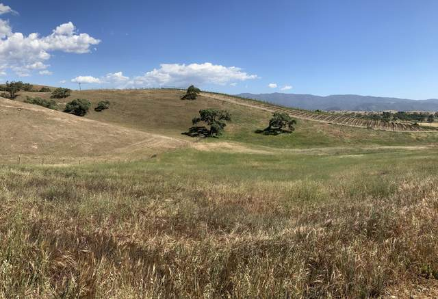 4600 Estelle Vineyard Dr, Santa Ynez, CA 93460 (MLS #21-1696) :: The Zia Group