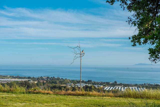 3600 Foothill Rd., Carpinteria, CA 93013 (MLS #21-1944) :: The Zia Group