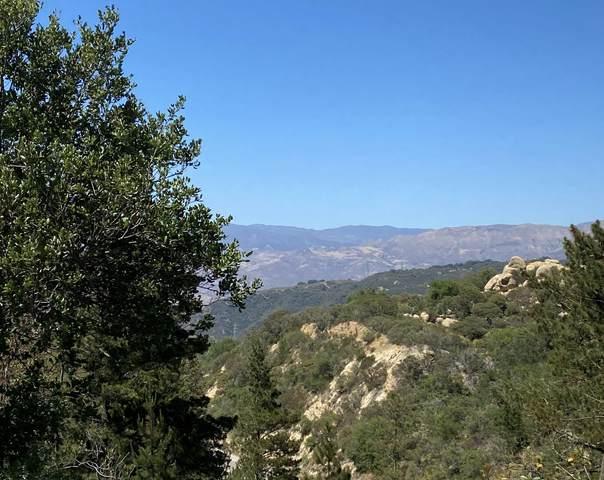 6598 Ca-154, Santa Barbara, CA 93105 (MLS #21-2115) :: The Zia Group