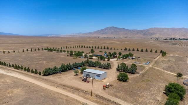 1220 Perkins Rd, NEW CUYAMA, CA 93254 (MLS #21-2122) :: Chris Gregoire & Chad Beuoy Real Estate