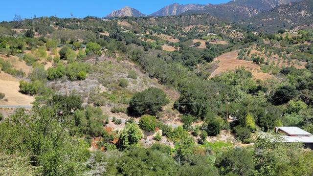 223 Conejo Rd, Santa Barbara, CA 93103 (MLS #21-2143) :: Chris Gregoire & Chad Beuoy Real Estate