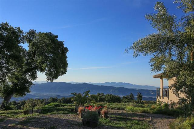 13500 E Sulphur Mountain Rd, Ojai, CA 93023 (MLS #17-3077) :: The Zia Group