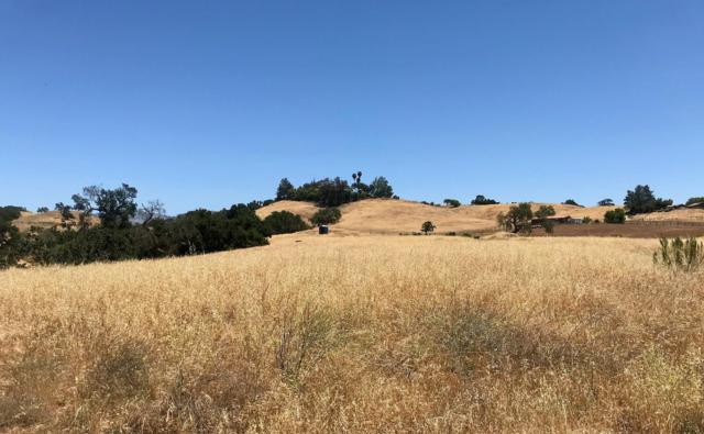 2905 Bramadero Rd, Los Olivos, CA 93441 (MLS #18-2386) :: The Zia Group