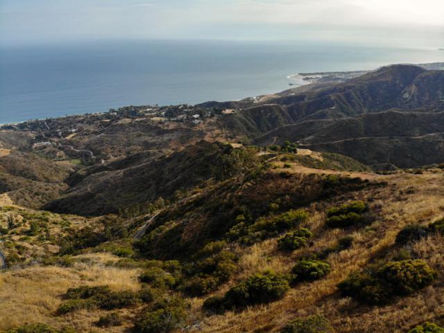 2252 Rambla Pacifico St, Malibu, CA 90265 (MLS #18-2441) :: The Zia Group