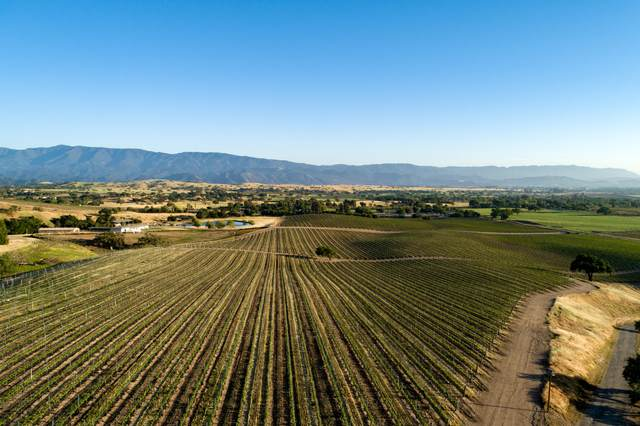 4490 Estelle Vineyard Dr, Santa Ynez, CA 93460 (MLS #19-1756) :: Chris Gregoire & Chad Beuoy Real Estate