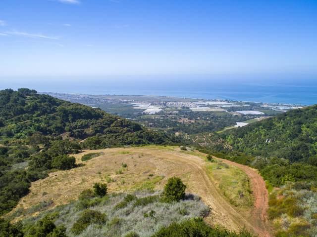 3589 Toro Canyon Park, Santa Barbara, CA 93108 (MLS #19-1984) :: The Epstein Partners