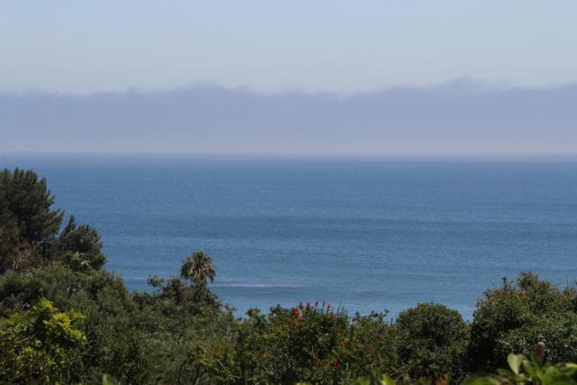 113 Paradise Cove Rd., Malibu, CA 90265 (MLS #19-2070) :: The Zia Group