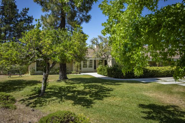 3166 Riley Rd, Solvang, CA 93463 (MLS #19-2077) :: The Zia Group