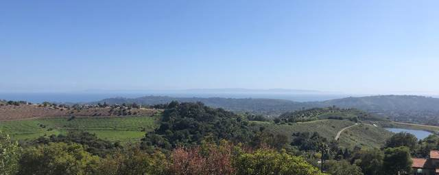 1535 San Roque, Santa Barbara, CA 93105 (MLS #20-1218) :: The Zia Group